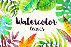 50 High Res Watercolor Leaves by desenart on Creative Market