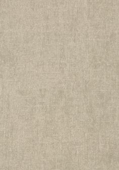 BELGIUM LINEN, Grey, T57123, Collection Texture Resource 5 from Thibaut
