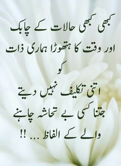 Krny Stock Quote Absolutely Right  My Stock  Pinterest  Urdu Quotes Urdu Poetry .