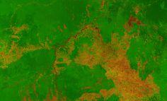 Patterns of destruction/Muster der Zerstörung: Satellitenbild Vegetation Brasilien