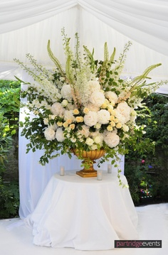 White Floral Display