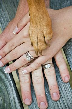 I love when people have their pets in their engagement/wedding photos!