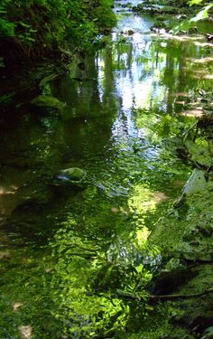 Small, fresh streams pop up from the underground several places on Aeroe, and remain small, due to the Islands size. Wonder if one can drink safely from them? Photo by Naja Abelsen. Green Environment, Solar Power, Wind Turbine, Danish, Denmark, Pop Up, Islands, Medieval, Fresh