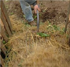 Organic Gardens Network: 7 Ways to Make Your Compost Heap Better. Diagnosis of typical problems and solutions