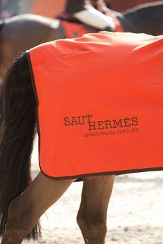Thierry-Poussard Saut Hermes