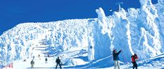 Top Picks for Skiing in Japan