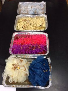 Ruminant digestion blind feel lab. Morgan Campbell - www.OneLessThing.net