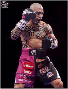 Boxing Fight, Mma Boxing, Boxing Workout, Miguel Angel Cotto, Miguel Cotto, Kickboxing, Muay Thai, Jiu Jitsu, Body To Body