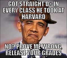 THE SEALED INFORMATION HAS FINALLY BEEN RELEASED!  OBAMA IS 'NOT' A GENIUS....HE IS NOT EVEN HALFWAY SMART!!!!!