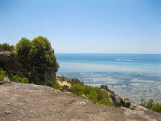Rye to Blairgowrie Foreshore (Whitecliffs) Walk | The Official Website of Mornington Peninsula Tourism