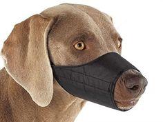 Dog Muzzle Knitting Pattern : 1000+ ideas about Dog Muzzle on Pinterest Dog Training Equipment, Dog Suppl...
