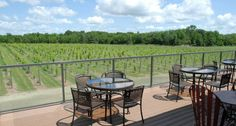 Dancing Dragonfly Winery, St. Croix Falls, WI | Travel Wisconsin