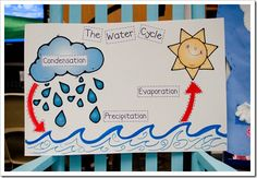 Nice idea for a water cycle poster or bulletin board. fifth grade did this in science class last month. Grade 2 Science, Kindergarten Science, Elementary Science, Science Classroom, Science Lessons, Teaching Science, Science For Kids, Classroom Ideas, Classroom Posters