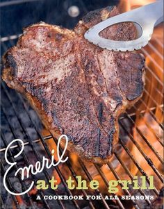 Emeril at the Grill by Emeril Lagasse