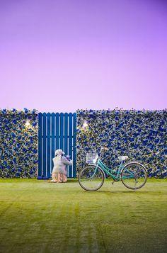 Daisy Wallpaper, Cute Pastel Wallpaper, Locked Wallpaper, Picture Mix, Isometric Art, Blue Bloods, Daegu, K Idols, Orange County