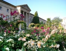 Spring time: Le Jardin des Plantes.  I have been watching this garden for a year now, changing with each season, and it is always always so beautiful.   Watch the video!