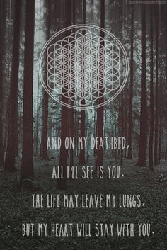 i absolutely love BMTH and ive been obsessed since they have became a band. Band Quotes, Lyric Quotes, Bring Me The Horizon Lyrics, Lyrics Tumblr, The Wombats, Hardcore, Bmth, Pierce The Veil, My Chemical Romance