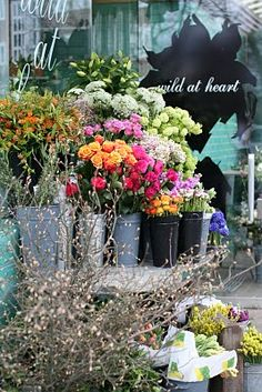 Wild at heart flowers