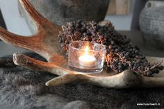 Antlers and horns Natural Living, Ranch Farm, Rustic Charm, Log Homes, Home Collections, Cottage Style, Candle Holders, Sweet Home, Cabin Fever