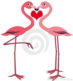 Google Image Result for http://www.dreamstime.com/cute-flamingo-thumb8332234.jpg