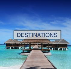 Destinations I Want To Travel, Us Travel, Guava Tree, Explore Travel, Money Saving Tips, Marina Bay Sands, Outdoor Activities, Underwater, Destinations