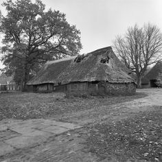 Old Farm Houses, The Province, Netherlands, Shelter, Farmhouse, House Styles, Barns, Cottages, Gem