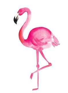 imagens para imprimir e criar quadros decorativos. #inspiraçoes #flamingos #ideias #decoraçao #tendencias