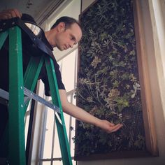 Hunt Littlefield caring for our succulent wall.