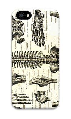 Iphone 5s Case Aoffly® Artistic Anatomy Pc Hard Case ... http://www.amazon.com/dp/B014AVP8LK/ref=cm_sw_r_pi_dp_s2tnxb0TF7GYP