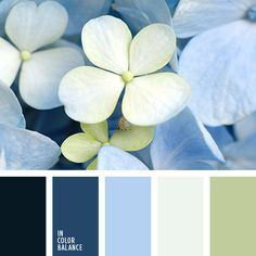 60 Ideas Bathroom Colors Blue Sea Living Rooms For 2019 Palettes Color, Spring Color Palette, Green Colour Palette, Blue Palette, Spring Colors, Bathroom Colors Blue, Bedroom Colors, Design Seeds, Hydrangea Colors