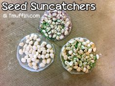 Artsy Parenting! Craft and Connect: Seed Suncatchers — The Teachers' Lounge