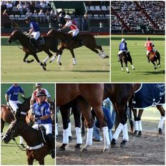 Polo in Buenos Aires, Argentina is the best spectator sport ever imagined.