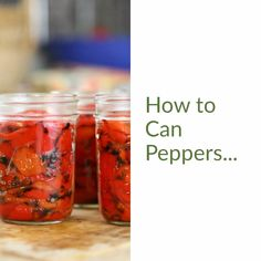 Learn how to can peppers in an easy step-by-step picture tutorial. We'll go over everything that you need to know in order to can peppers safely ant home! Canning Bell Peppers, Crock Pot Freezer, Freezer Recipes, Red Pepper Paste, Red Pepper Recipes, Canning Vegetables, Italian Hot, Pressure Canning, Roasted Red Peppers