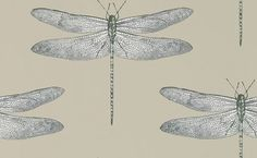 Demoiselle (111241) - Harlequin Wallpapers - delicate motif of a dragonfly. Shown here in the jute/ slate colourway.colour match