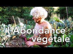 l'Abondance Végétale (selon Philip Forrer) - culture sur buttes - YouTube Permaculture, Bill Mollison, Dream Garden, Agriculture, Urban, Diy, Inspiration, Garden, Natural Garden