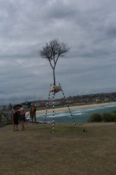 """""""fragment"""" by Kevin Draper WA. This sculpture envolved from a series of works using tripod structures integrated with symbolic plant forms.  The tripod acts as an isolating device suspending the tree symbol between land and the sky."""