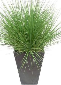 Artificial 3ft Grass Plant From Evergreen Direct