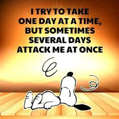 Cute Quotes, Great Quotes, Funny Quotes, Inspirational Quotes, Images Snoopy, Snoopy Pictures, Charlie Brown Quotes, Charlie Brown And Snoopy, Peanuts Quotes