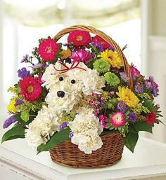 a-DOG-able® in a Basket Unleash smiles with our original a-DOG-able® creation! Hand-designed inside a reusable handled basket with carnations, assorted poms, asters and more, it's perfect for dog love