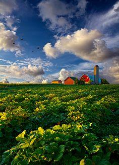 Living Wisconsin by Phil Koch via Flickr.com