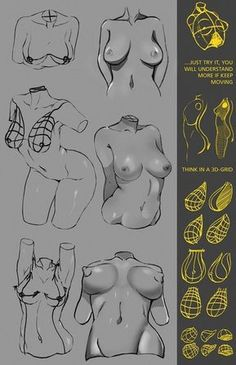 """anatoref: """"How to Draw Breasts Row 1 - 5 Row 6 - 8 """" Comic Drawing, Body Drawing, Anatomy Drawing, Drawing Practice, Drawing Poses, Figure Drawing, Drawing Tips, Drawing Techniques, Drawing Ideas"""