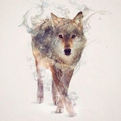 """Wild Animals, Smoke And Nature Merged In My Double Exposure Photos by Dániel Taylor. I wanted to create a smoke effect on animals, the hard part is a whole body that needs to be """"smokeified"""". -- wolf3"""