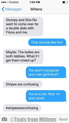 NEW Daily Mittens: The Stripes Edition More Mittens: http://textsfrommittens.com/ Order Mittens' book: http://amzn.to/1BVvMmB