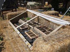 DIY-Greenhouses-apieceofrainbowblog (31)