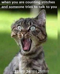 Haha. So true.