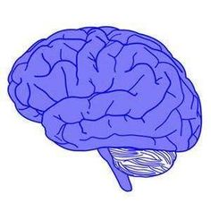 Brain volume changes after CBT #ReduceAnxietyWithoutDrugs