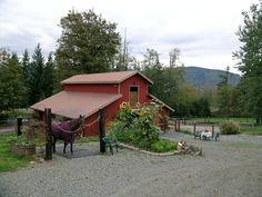Build an Outdoor Wash Rack - Smart Horse Keeping