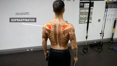 Rotator cuff exercises are crucial for shoulder health and injury prevention. In this article, we'll cover three effective rotator cuff exercises. Rotator Cuff Strengthening, Rotator Cuff Exercises, Rotator Cuff Tear, Stability Exercises, Shoulder Pain Exercises, Shoulder Injuries, Shoulder Workout, Supraspinatus Muscle, Deltoid Workout