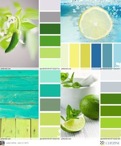 Color Palettes - crisp and cool blue, yellow, gray and green. I like the upper right set.