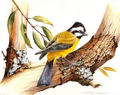 Схема вышивки «Птица на дереве» - Схемы автора «WhiteWinter» - Вышивка крестом